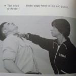 throat-punch1